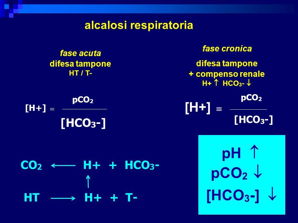 pCO2  [HCO3-]  [H+]  alcalosi respiratoria [HCO3-] CO2 H+ + HCO3-
